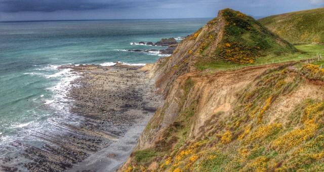 Devon coast on a sunny day.